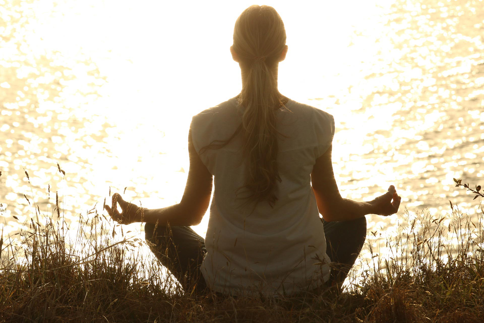 Méditation pleine conscience. cerveau, stress, amygdale, cortex préfrontal